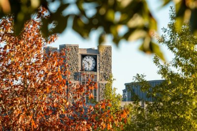 view of Holtzman clock tower through the fall leaves at sunset